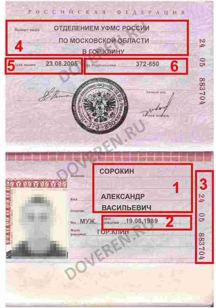 Паспорт представителя