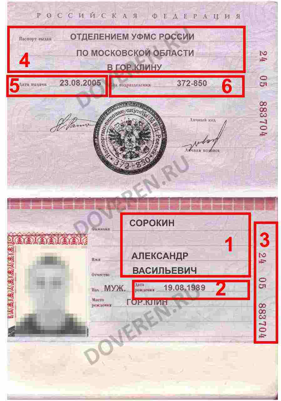 Паспорт доверенного лица